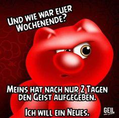 Birgit Jou Geile Wil-67741
