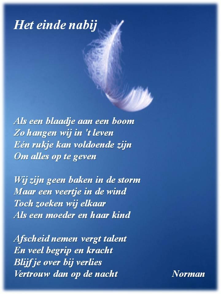 Vriend Gezocht Lieve-50316