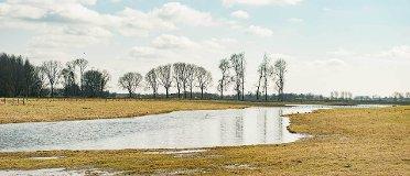 Assen Wending Met Wandeling-77901