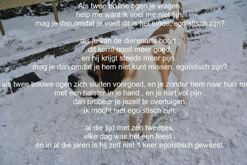 Gaan Op Kant Wij-29515