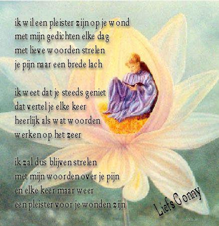Los Leven Wil Op Er Flink Even-11566