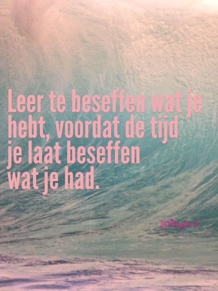 En Borstenfolteraars Slechte Leiden Hebt-40565